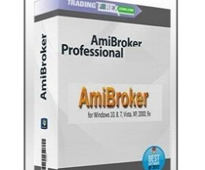 AmiBroker Professional Edition [6.39.1] With Full Crack + Activation Key Updated